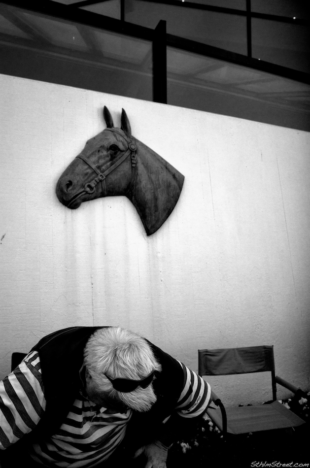 Sthlm, 2014: Animal